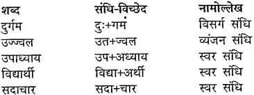 MP Board Class 10th Hindi Vasanti Solutions Chapter 5 कर्मवीर img-3