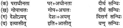 MP Board Class 10th Sanskrit Solutions Chapter 18 महाराजः छत्रसालः img 5
