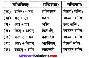 MP Board Class 8th Sanskrit Solutions विविधप्रश्नावलिः 2 Q6