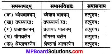 MP Board Class 8th Sanskrit Solutions Chapter 18 सत्कर्म एव धर्मः 2