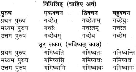 MP Board Class 9th Sanskrit व्याकरण धातु और क्रिया img-5