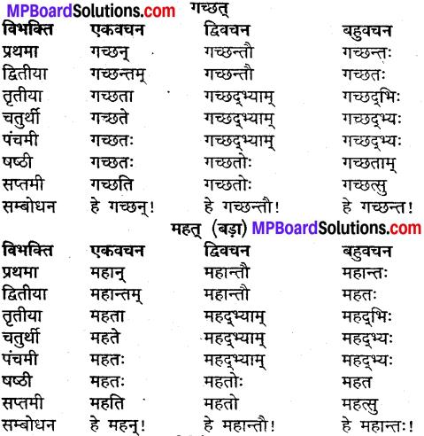 MP Board Class 9th Sanskrit व्याकरण शब्द रूप img-10