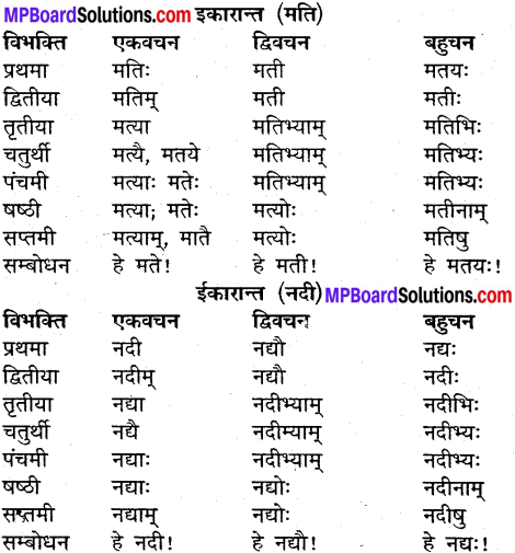 MP Board Class 9th Sanskrit व्याकरण शब्द रूप img-13
