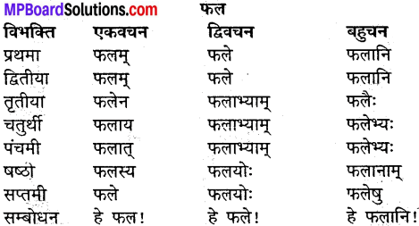 MP Board Class 9th Sanskrit व्याकरण शब्द रूप img-19