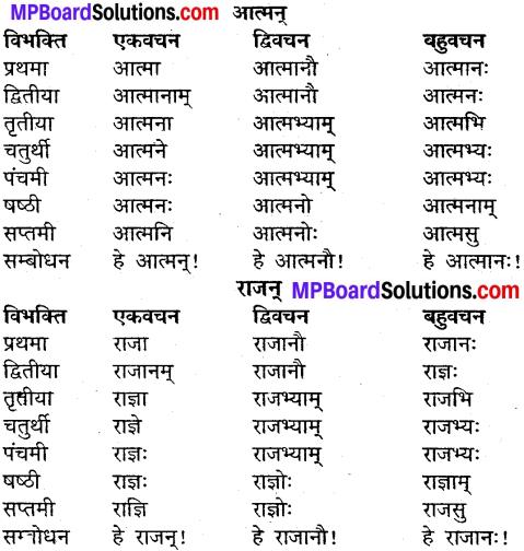 MP Board Class 9th Sanskrit व्याकरण शब्द रूप img-8