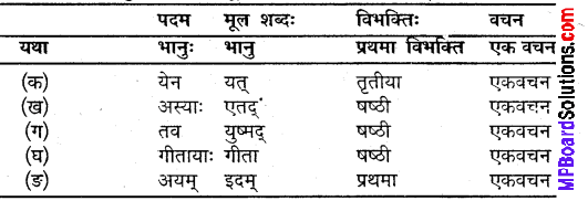 MP Board Class 9th Sanskrit Solutions Chapter 1 जयतु मे माता img-2