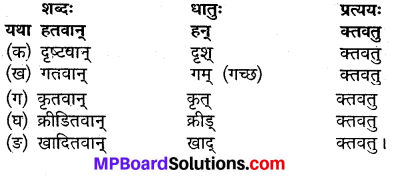 MP Board Class 9th Sanskrit Solutions Chapter 20 वेधशाला img-1