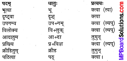 MP Board Class 9th Sanskrit Solutions Chapter 5 सर्वदमनः भरत img-4