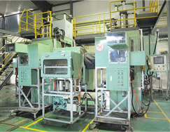Full automatic molding press