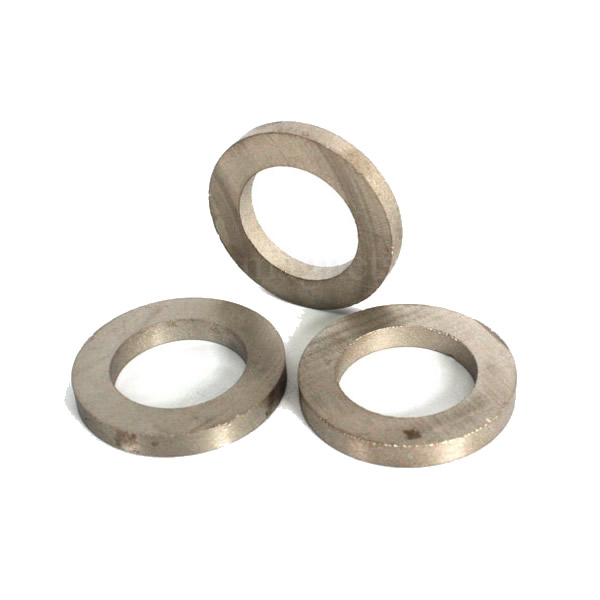 Ring Rare Earth SmCo Magnet