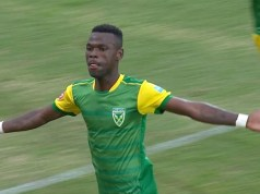 Golden Arrows and Zimbabwe Warriors' deadly striker Knox Mutizwa