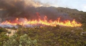 Cape fires