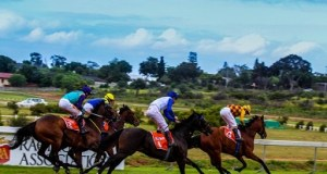 Horse racing Durbanville