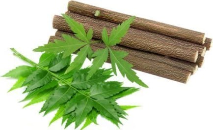 neem-chew-sticks-sold-in-foreign-countries