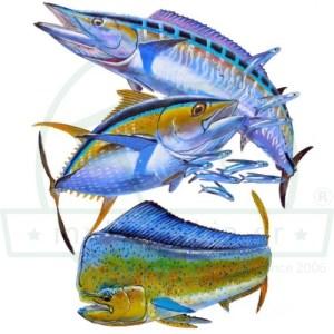 Ψάρια Ψάρεμα Εκτύπωση Μπλουζάκι