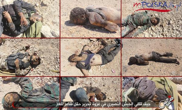 al-shaer-syria-21-lipca.jpg