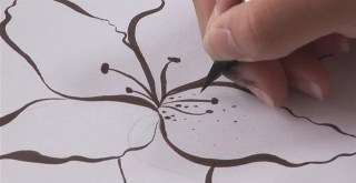 Jak narysować lilię