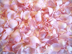 Mazurek z płatkami róż