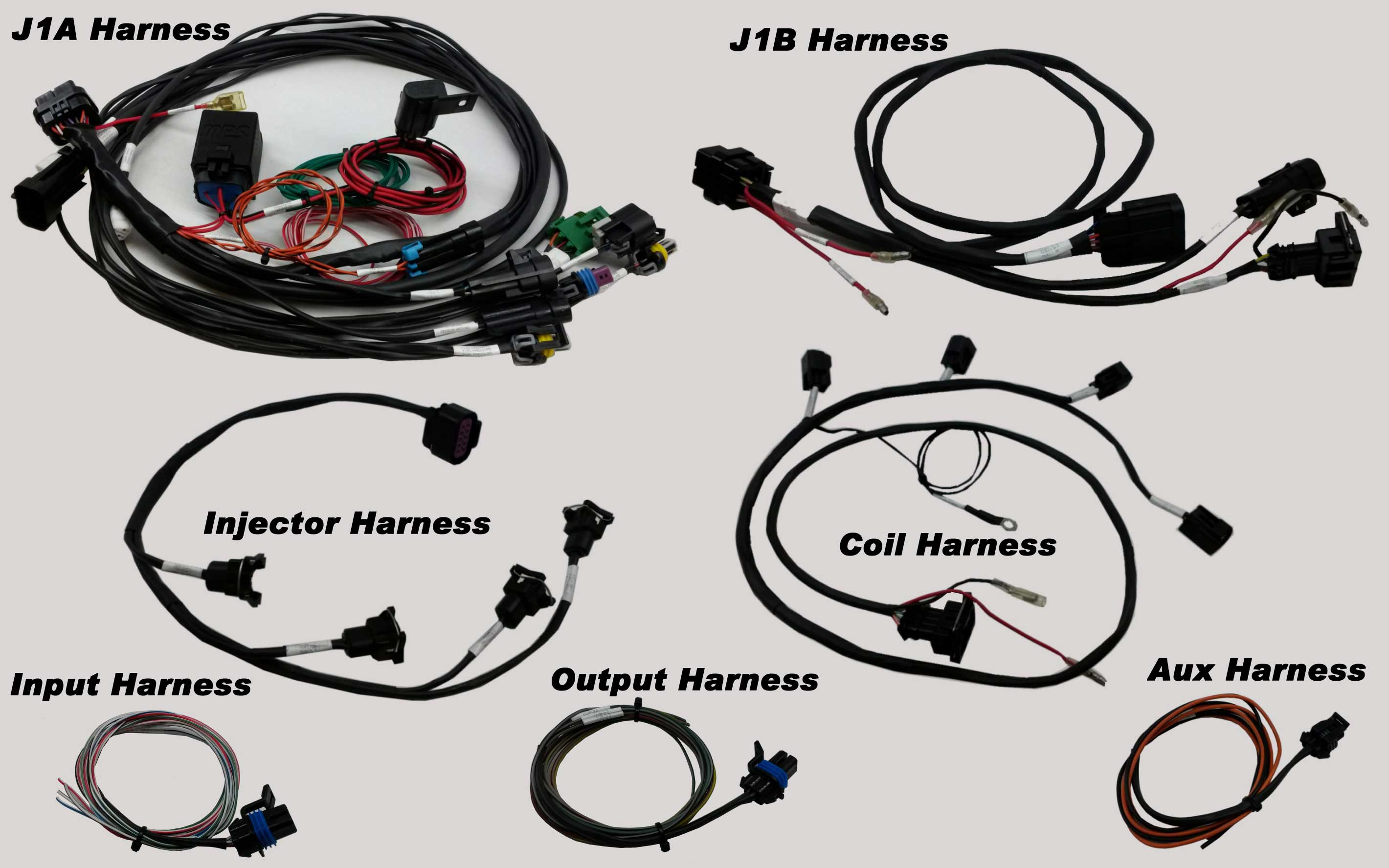 Holley Wiring Harnes
