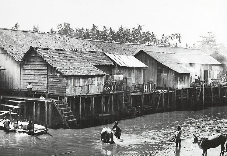 柬埔寨河中沐浴