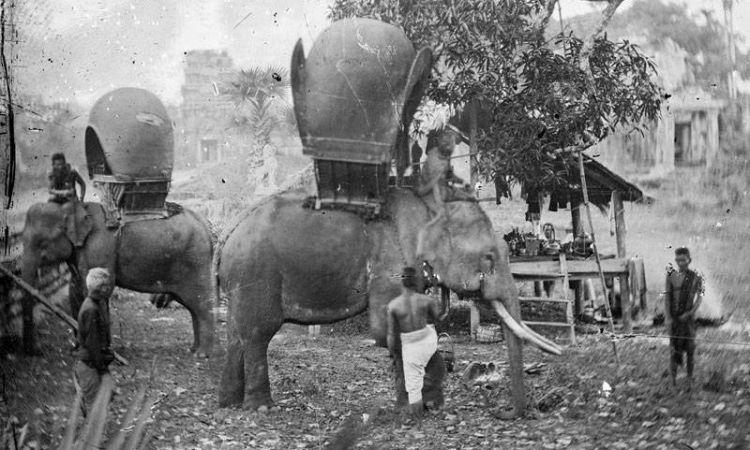 约翰·汤姆森 (John Thomson) 有时以大象作为交通工具