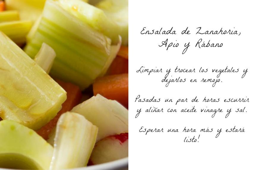 Sunday-Brunch-carrot-celery-radish-Ensalada-zanahoria-apio-rábano