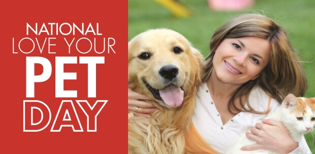 commercial kitchen hood cleaning shun shears love your pet day: dog treat recipes | mr. appliance blog