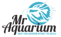 Mr Aquarium