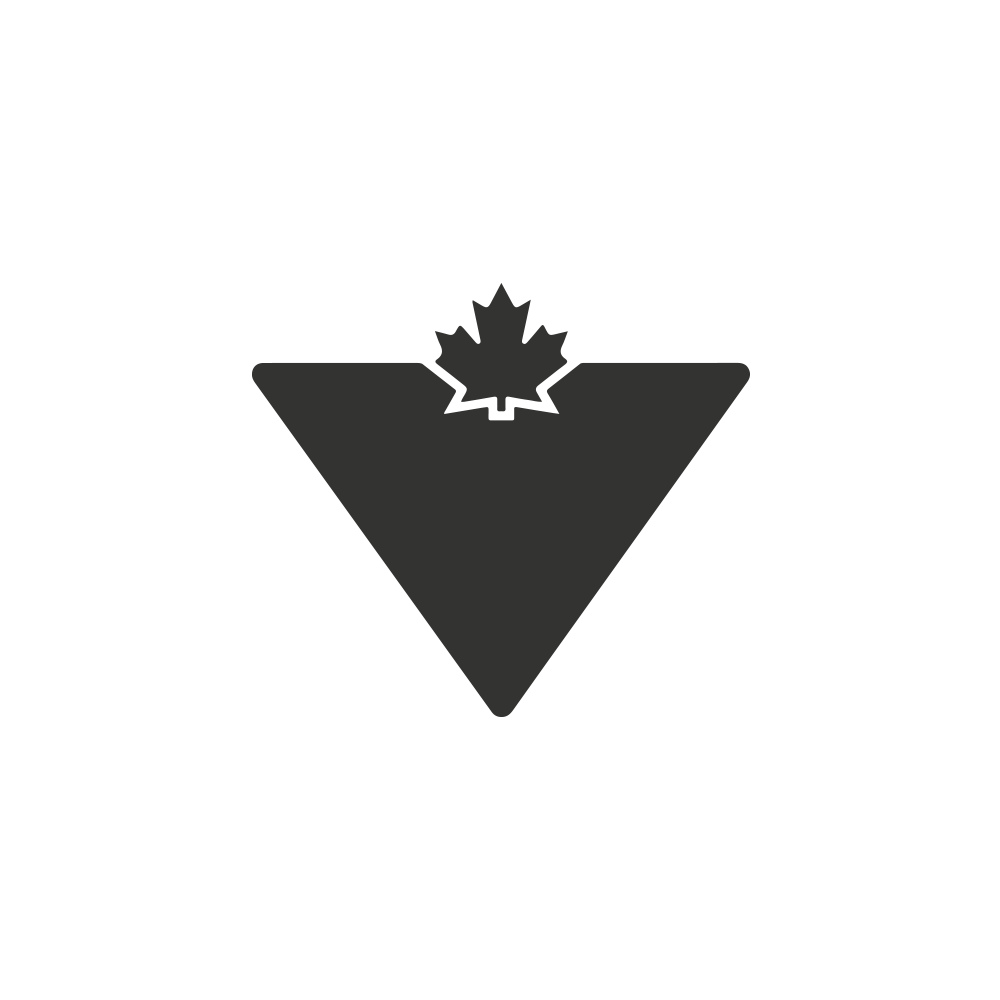 Canadian Tire IPad App Mrbava