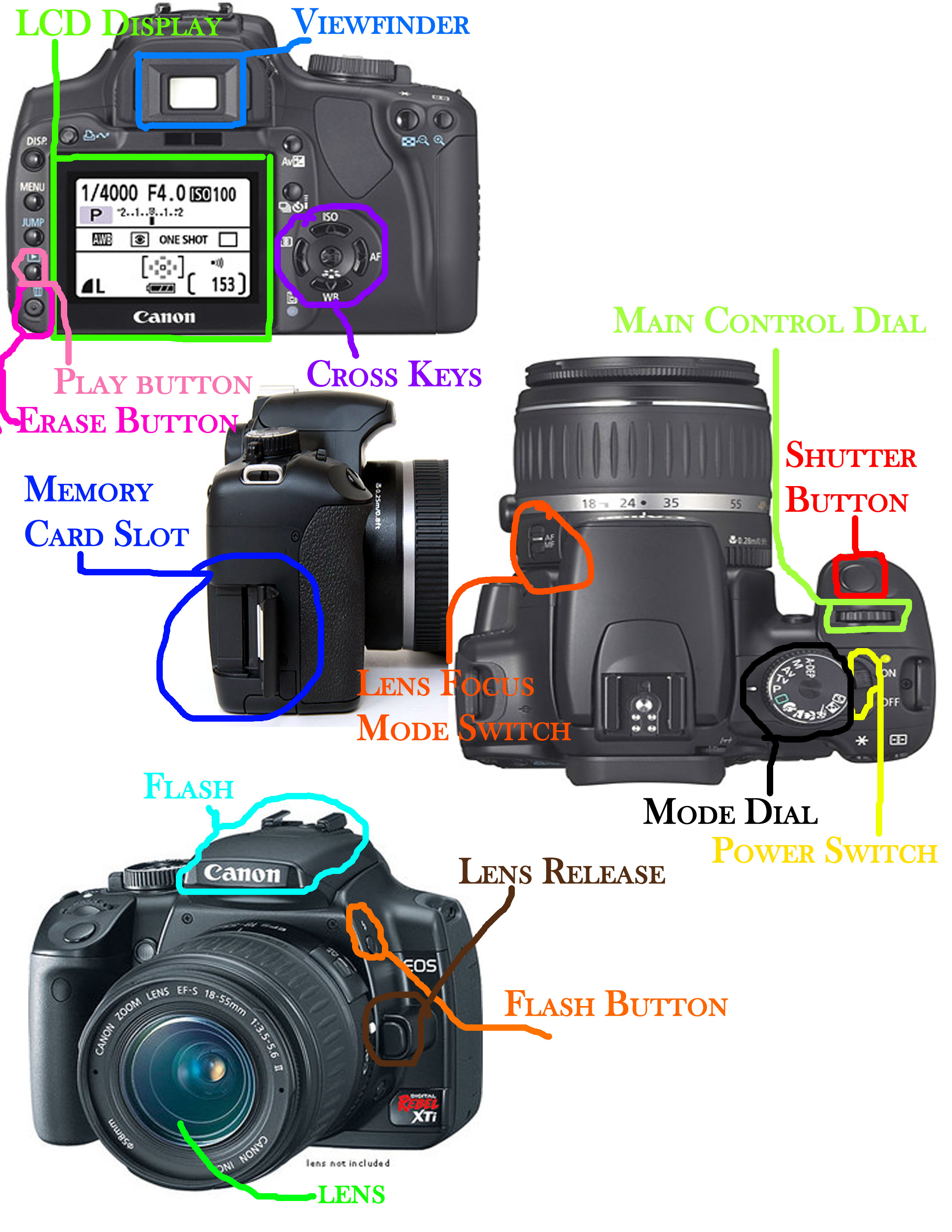 slr camera diagram male mouse anatomy lens parts free engine image for
