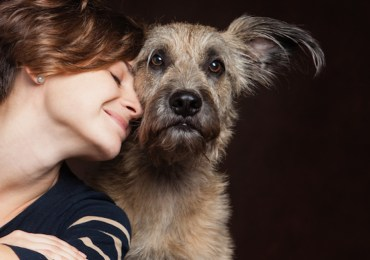 Summer Tips to Keep Your Pets Healthy