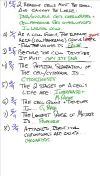 Chapter 8 Cell Growth And Division Worksheet Answers ...