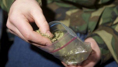 """C 4 articolo 2066254 upiImagepp - L'Italia dà il via libera alla coltivazione della """"marijuana di Stato"""""""