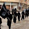 """iraq ape 1  - L'Isis: """"Conquisteremo Roma. Uccideremo militari e civili"""""""