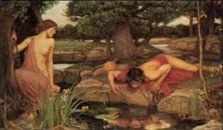 narciso eco 1 320x187 - Narciso