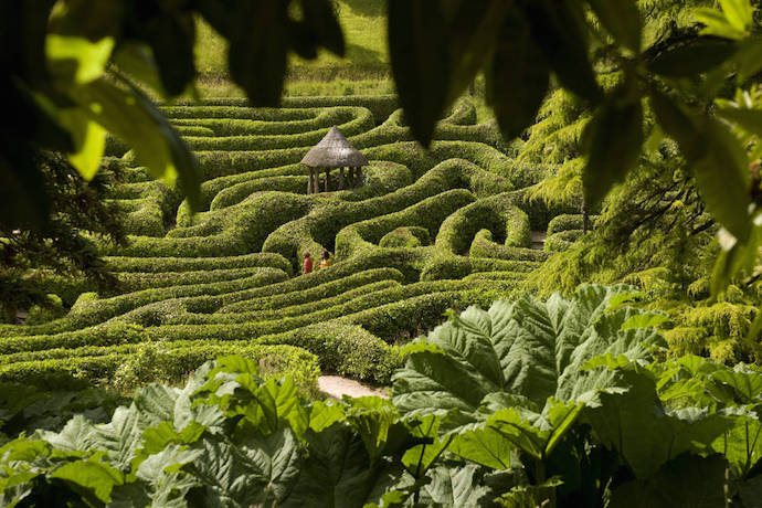 The Maze at Glendurgan Garden, Cornwall