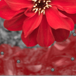Screen-Shot-2015-09-05-at-01.49.05 Fantastic Ways to Give Your Photographs That Fine Touch