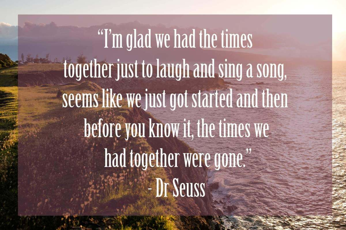 Im-glad-we-had-the-times-together-just-to-laugh | Dr Seuss Quotes Which Will Inspire You