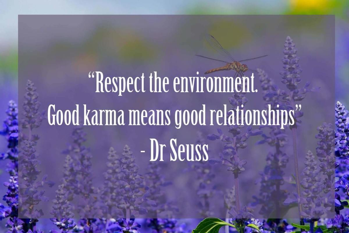 Respect-the-enviroment | Dr Seuss Quotes Which Will Inspire You