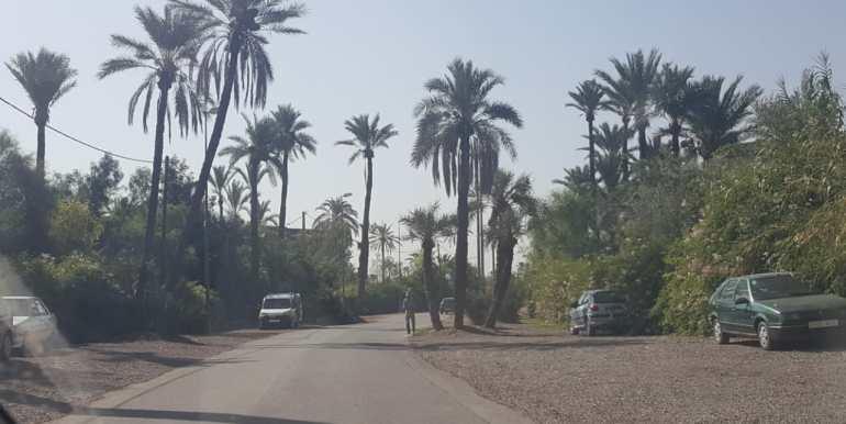 terrain 2000m² à la palmeraie (2)