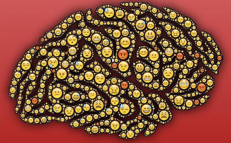 insan beyni hakkinda ufuk acan bilgier