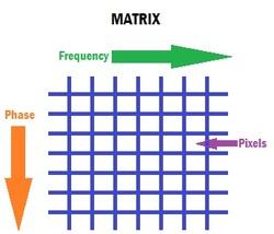 Image Matrix  MRI SHARK