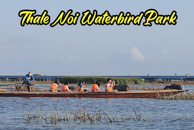 Thale Noi Waterbird Park Sanctuary Phatthalung Thailand 01 copy