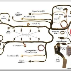 1972 Ford F100 Ignition Switch Wiring Diagram Cn Molecular Orbital Lsx Gen Iv Engine Harness - Mrk Motorsports Official Site
