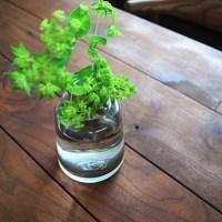 カッコいい花瓶! ホルムガード フローラ スモーク