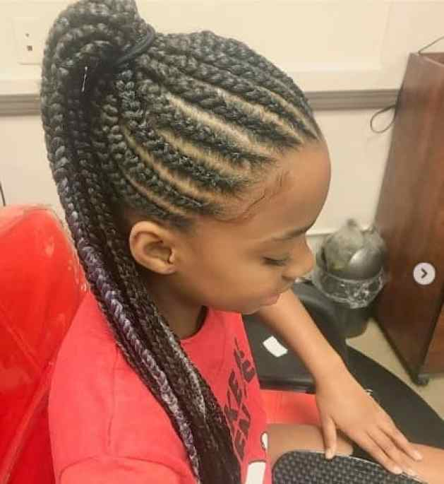 Braided Hairstyle With Long Raised Ponytail