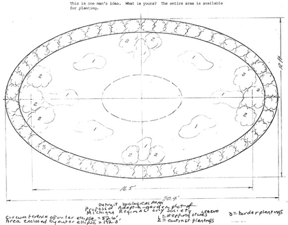 oval-drawing