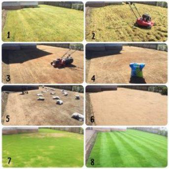 Lawn Renovation 2