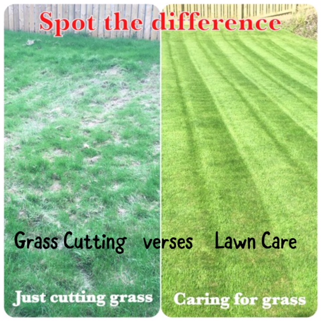 Grass Cutting verses Lawn Care