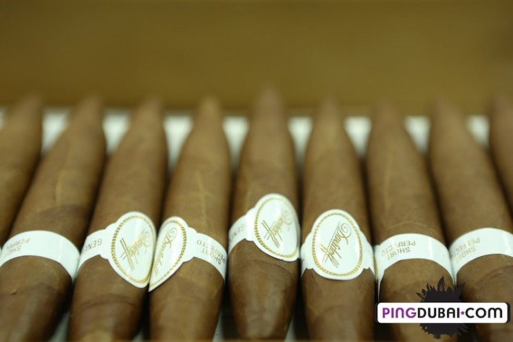 davidoff_cigars_factory_visit_dominican_255